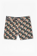 Looks Great With Tropical Parrot Canvas Shorts