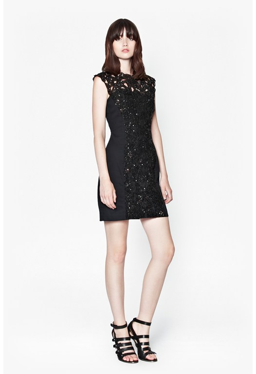 Encrusted Lace Dress