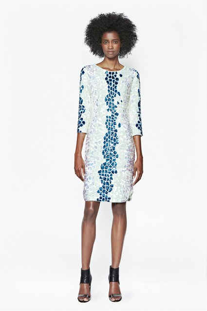 Caiman Sequinned Dress