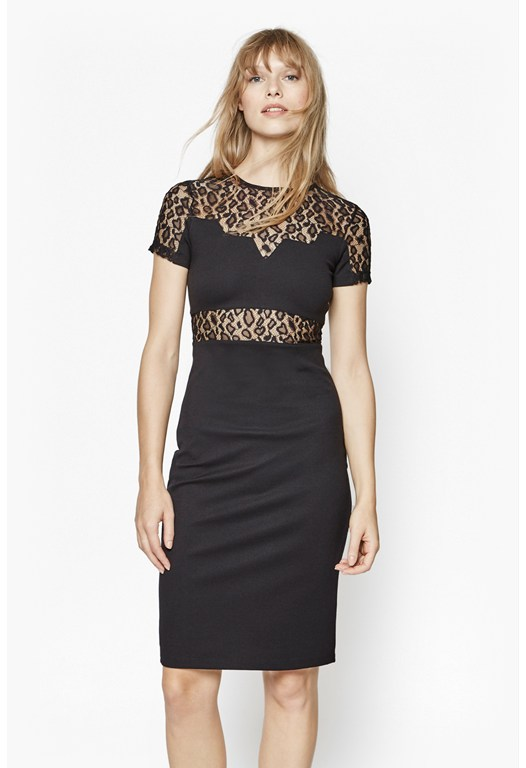 Animal Lace Stretch Pencil Dress