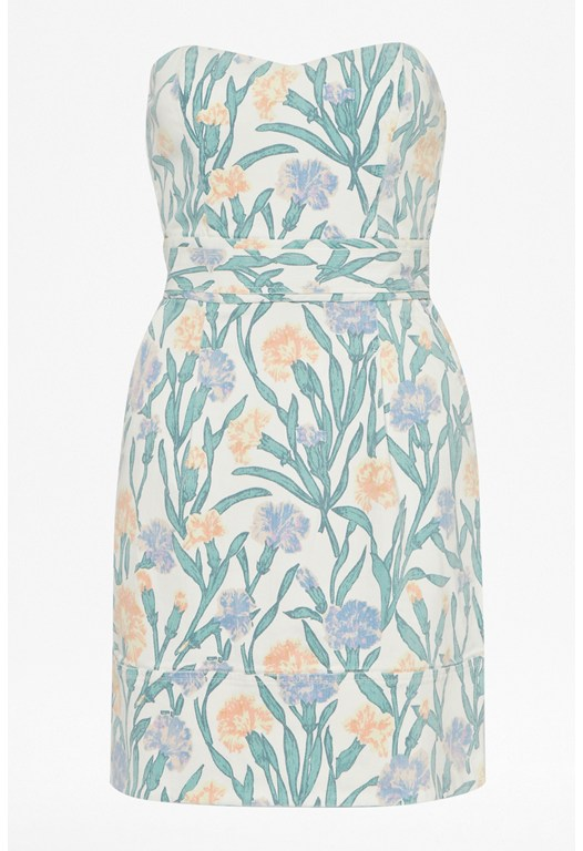 Carnation Denim Strapless Dress