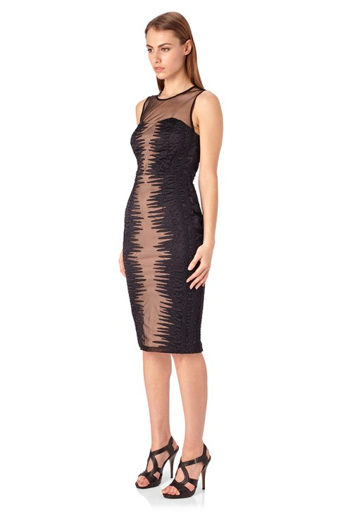Primal Mesh Fitted Dress