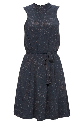 Ditsy Moonlight Flared Dress