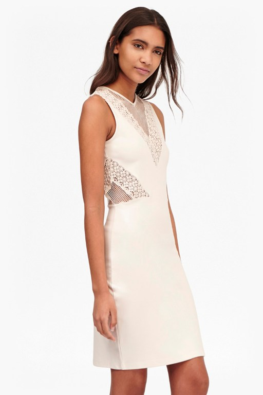 savannah mesh and lace bodycon dress