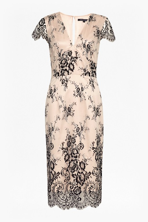 rosalie lace tea dress