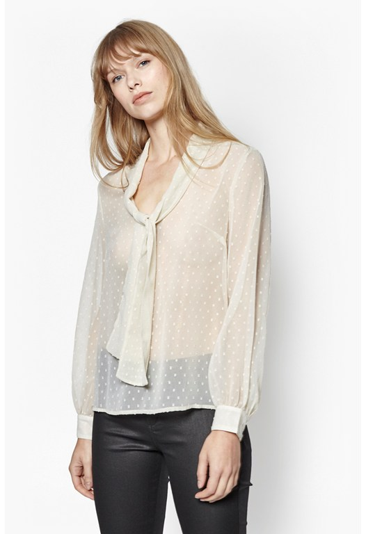 Dot Embroidered Chiffon Blouse