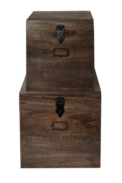 Darkwood Set Of Two Trunks