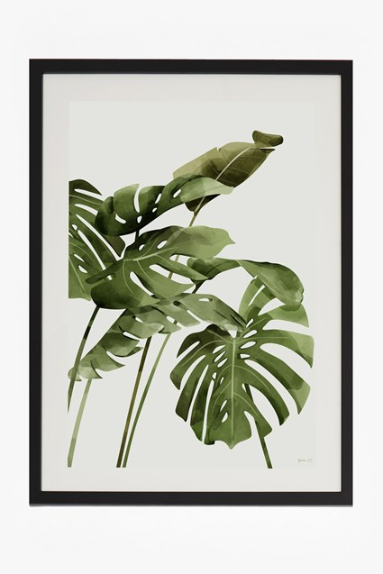 Large Framed Tropical Leaf Print 50X70