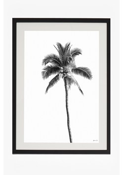 Large Framed Palm Springs Print 50X70