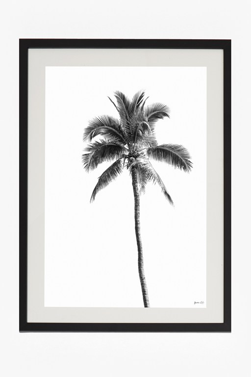 Complete the Look Large Framed Palm Springs Print 50X70