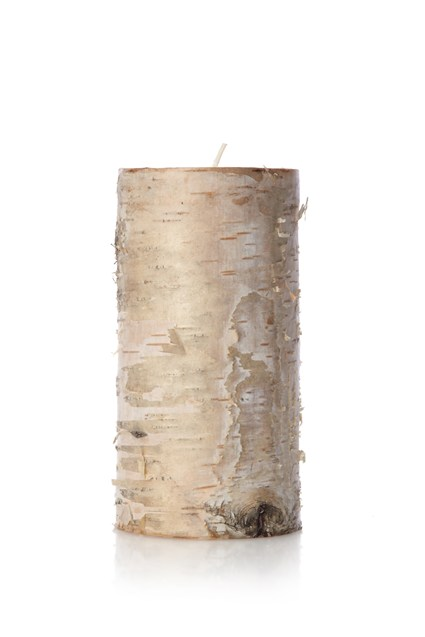 Tall Pillar Birch Candle