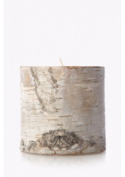 Short Pillar Birch Candle