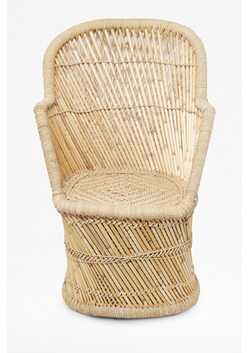 Fan Pampas Chair