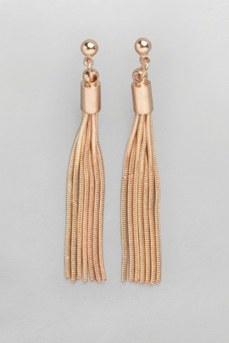 Snake Chain Tassel Earrings