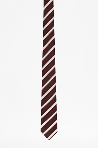 Paragliding Striped Silk Tie