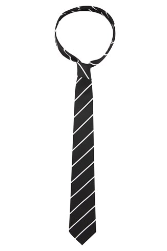 Management Striped Tie