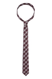 Transition Checked Silk Tie
