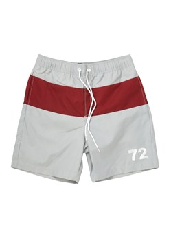 Panel Striped Swim Shorts